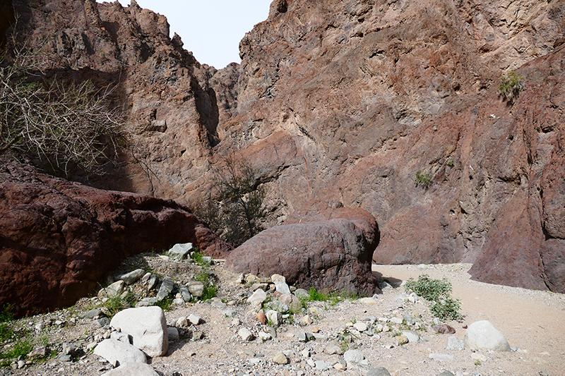 Arizona (Ringbolt) Hot Springs Trail