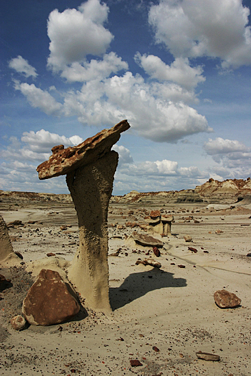 Bisti Wilderness South Unit