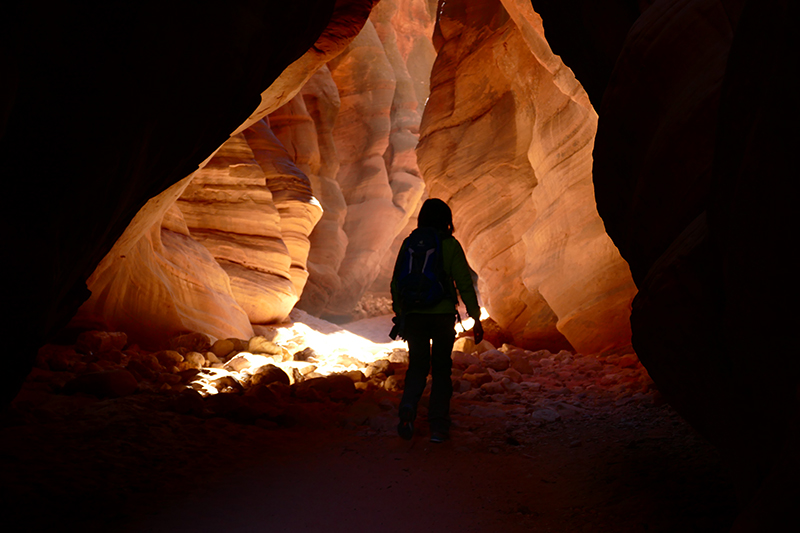 Buckskin Gulch [Vermilion Cliffs Wilderness]