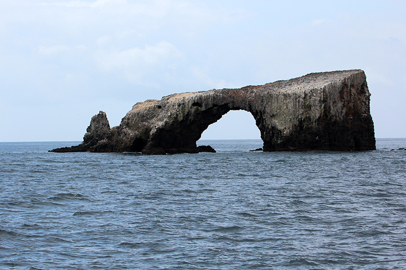 Arch Rock aka. Cabrillo Arch [Anacapa Island - Channel Islands National Park]