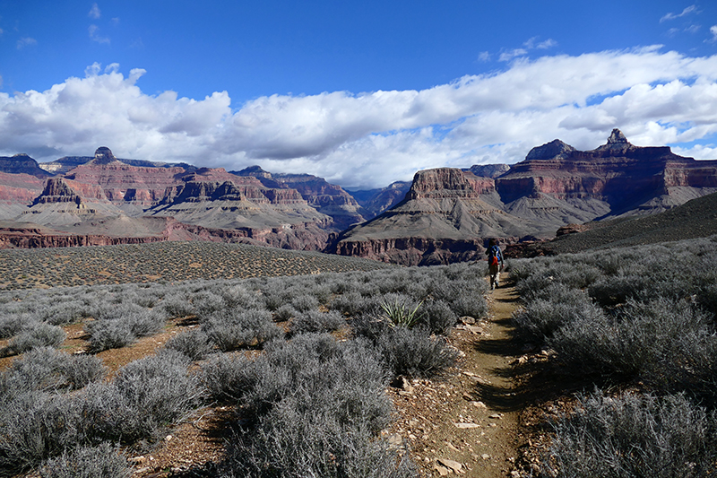 Grand Canyon Trails [Bright Angel - Tonto - Kaibab - River]