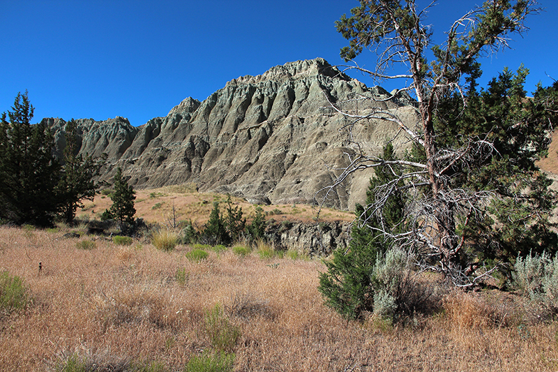 John Day Fossil Lava Beds National Monument [Sheep Unit]