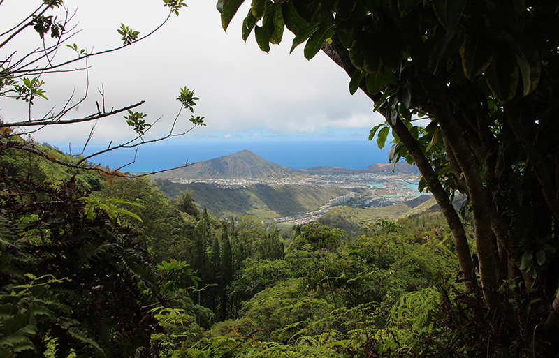Kuliouou Ridge Oahu Hawaii
