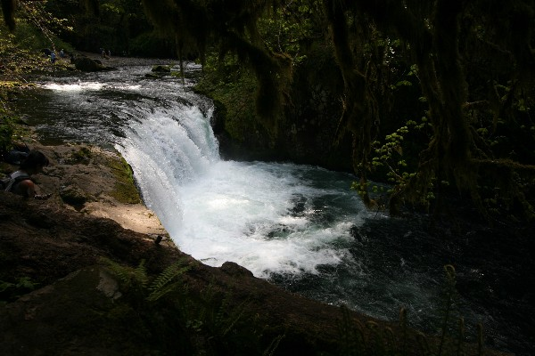 Lower Punch Ball Falls