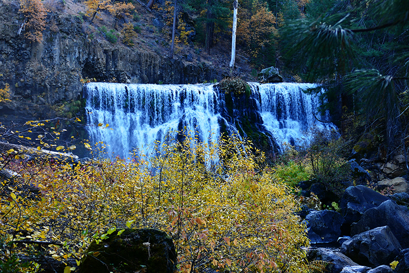 McCloud Creek - Middle Falls
