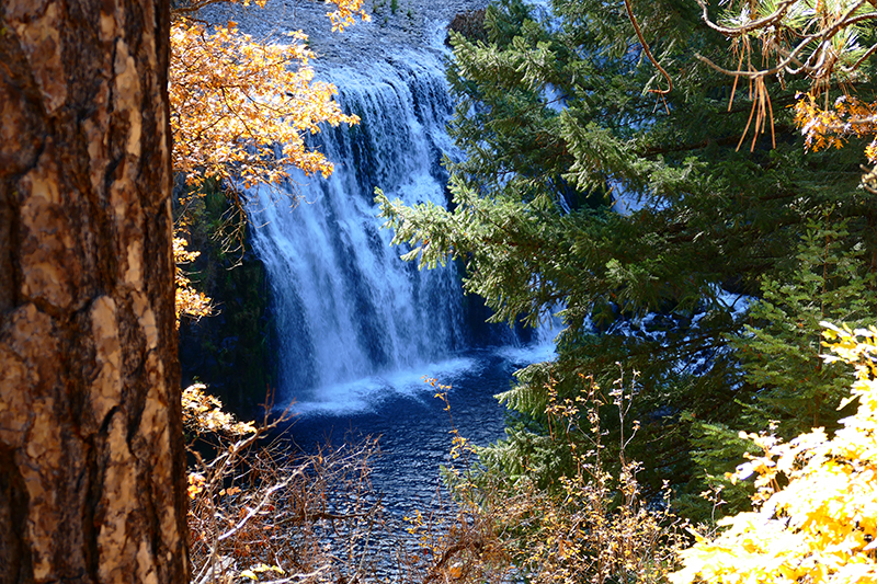 McCloud Falls [Lower Falls - Middle Falls - Upper Falls]