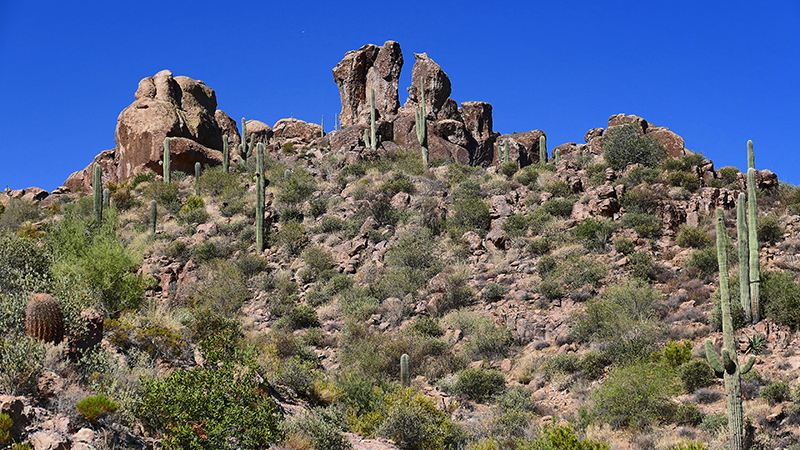 Miners Needle Trail [Superstition Mountains]