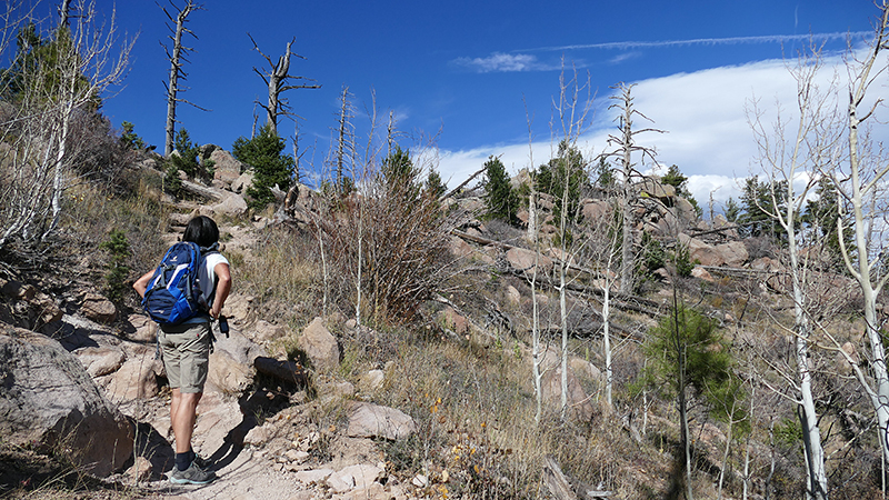 USA Hiking Database: Bilder der Wanderung -Pictures of the hike