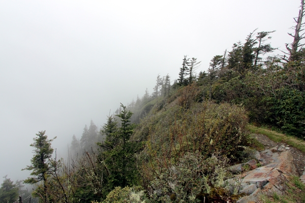 Mount Le Conte [Great Smoky Mountains Nationalpark]