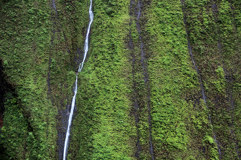 Mount Waialeale Wall of Tears Kauai