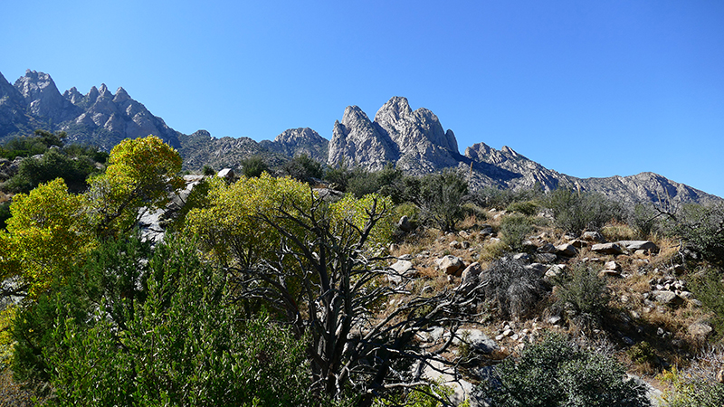 Organ Mountains [Organ Mountains National Recreation Area] - Pine Tree Loop Trail