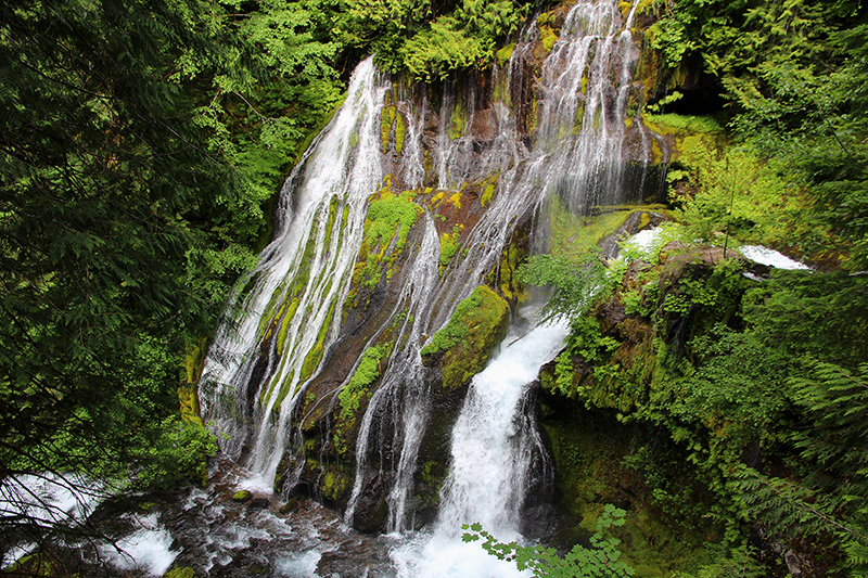 Panther Creek Falls Washington State