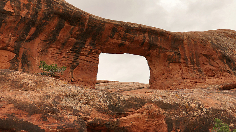 Picture Frame Arch - Behind the Rocks