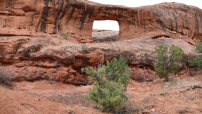 Picture Frame Arch [Behind the Rocks]