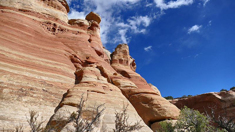 Arches of Rattlesnake Canyon