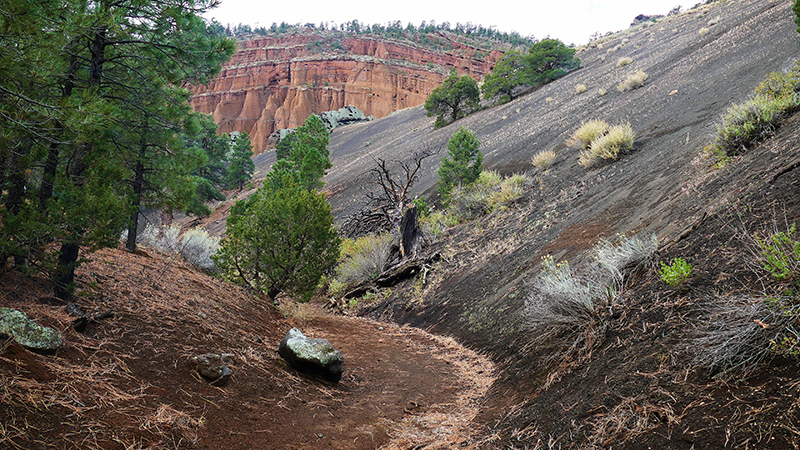 Red Mountain [Coconino National Forest]