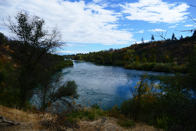 Sacramento River Walk [Redding]