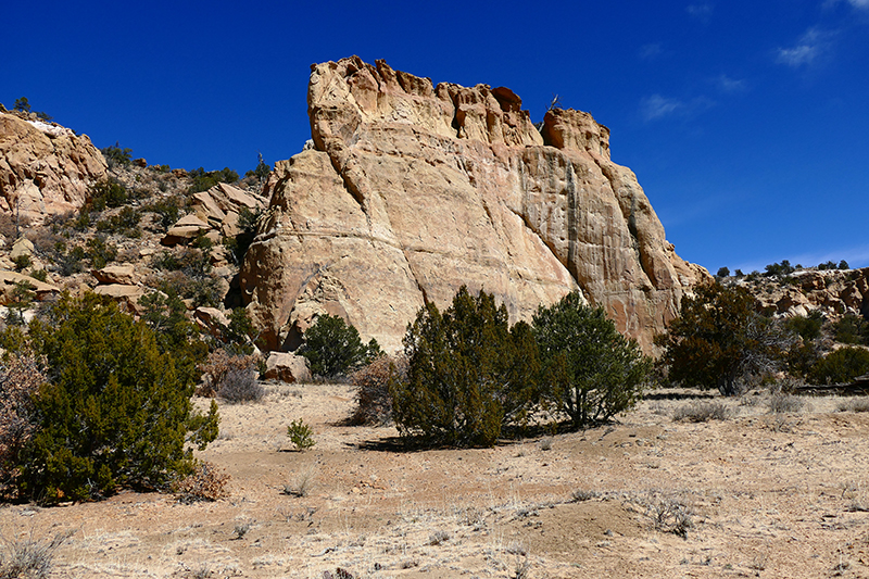 Sandstone Bluffs [El Malpais National Monument]