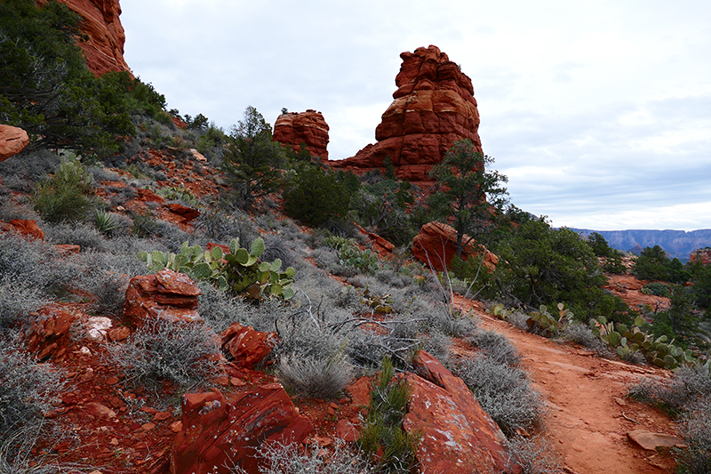 Bear Mountain Trail [Sedona]