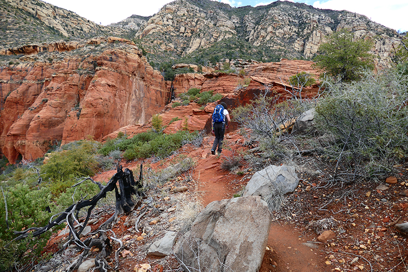 Brins Mesa Trail [Sedona]