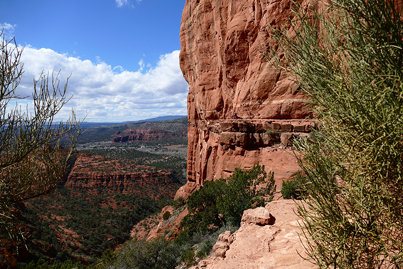 Cathedral Rock Trail [Sedona]