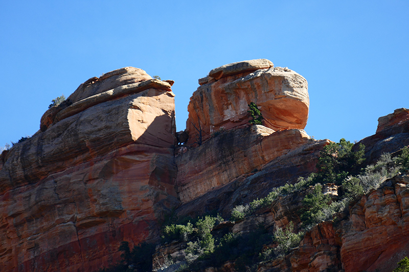Girdner Trail - Two Fence Trail - Lizard Head Trail - Chuck Wagon Trail [Sedona]