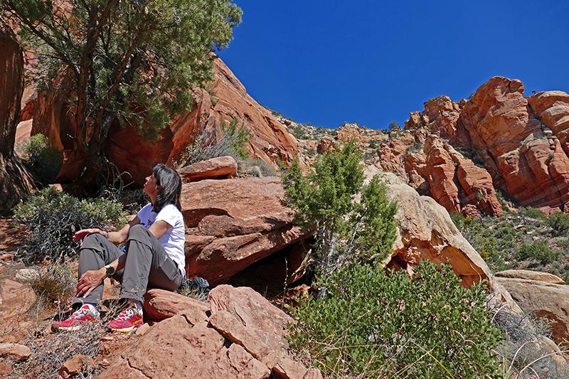 Lizard Head Trail - Chimney Rock Trail [Sedona]