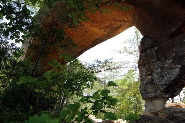 Sky Bridge [Red River Gorge]