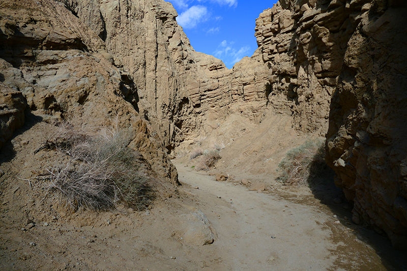 The Slot [Anza Borrego State Park]