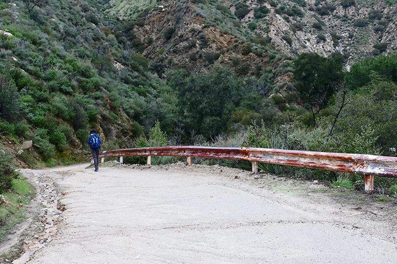 Trail Canyon and Falls [Angeles National Forest] ▽ USA Hike