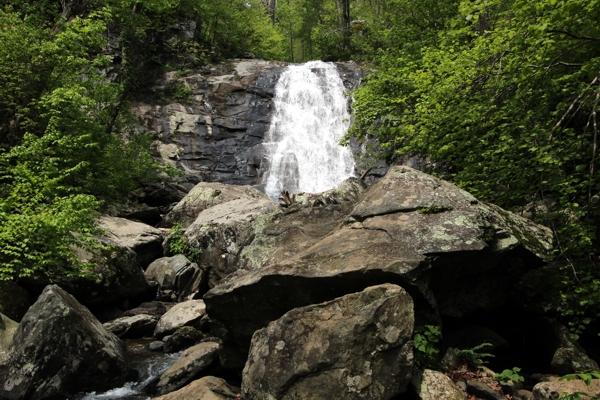 White oak canyon und cedar run falls shenandoah national